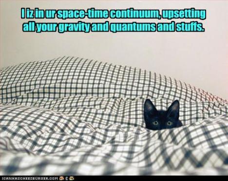 cat gravity